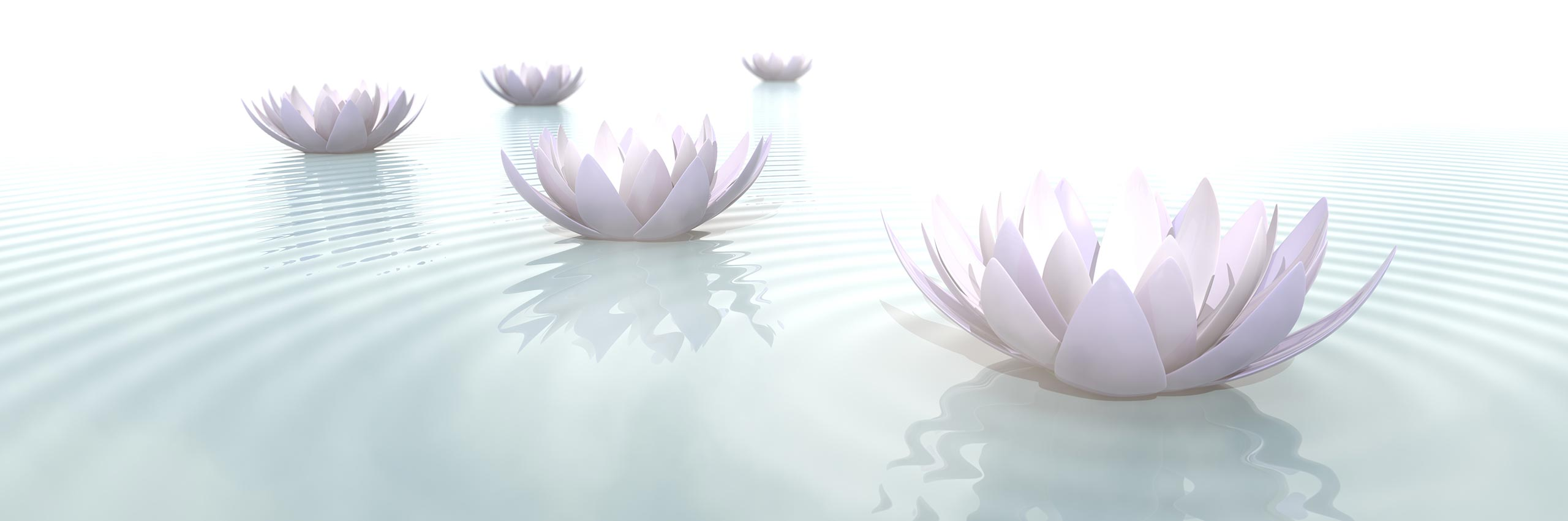 zen-satori-experience-bg